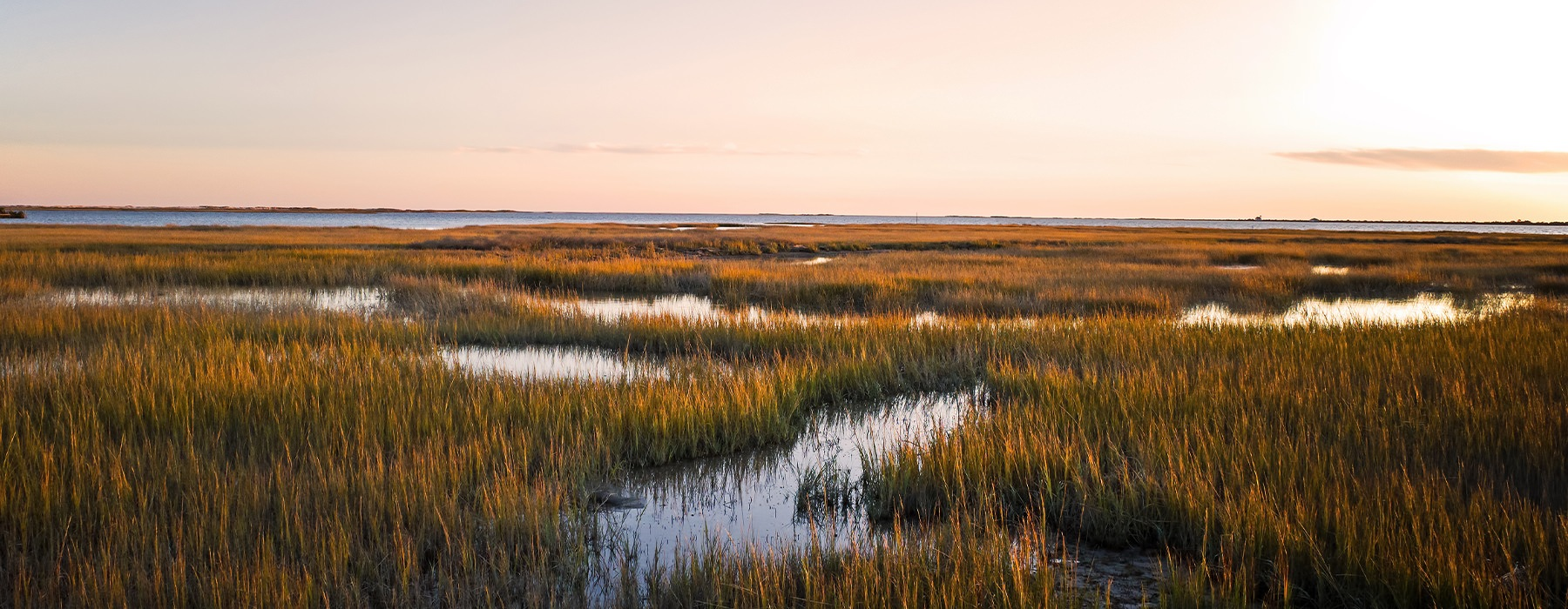 Wide open marsh in the beautiful sunset